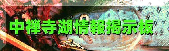 中禅寺湖情報掲示板